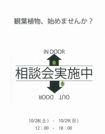 20171026180822-0001